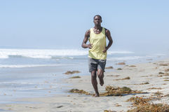 California beach run. Brown algae kelp washed ashore litters a California beach as a tall lean African American man runs along the surf Royalty Free Stock Photo