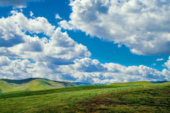 California beautiful highlands and meadows. Deep blue skies, billowing clouds, set the backdrop for the central valleys fields of mustard seed blooms and green Royalty Free Stock Photos