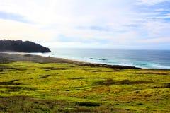 California highway 1 one Pacific ocean. California blue sky on the coast near big sur green grass royalty free stock photos