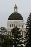 California Capital Sacramento Building. Trees royalty free stock image
