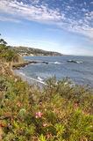 California Coast. View of the Plants and the Ocean on the Coast of California stock image