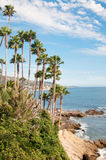 California Coast. Palm Trees on the Coast of California, USA royalty free stock photo