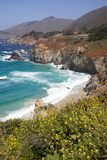 California Coast. Beautiful California coast with wildflowers in bloom Royalty Free Stock Images