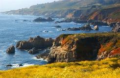 California coast. The California coast by Big Sur Royalty Free Stock Photos