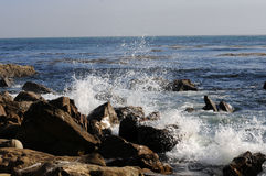 California coast. Waves splash against coastal rocks with blue ocean in background royalty free stock image