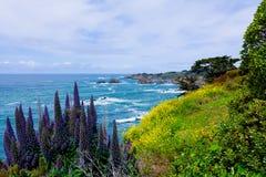 California Coast. In Mendocino County Royalty Free Stock Photos