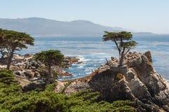 California Coast near Carmel. California Pacific Coast near Carmel Royalty Free Stock Images