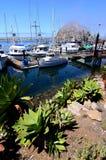California Coast Scene Royalty Free Stock Images