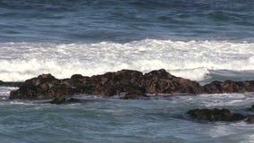 California Coast Waves stock video
