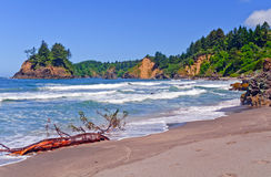 California coastal beach in Summer royalty free stock photo