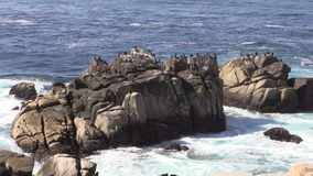 California Coastal Rocks stock footage