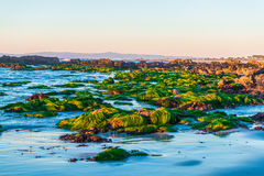 California coastal route 1. Scenic ocean view drive Royalty Free Stock Photo