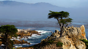 California coastline Stock Images