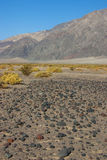 California, Death Valley National Park, The Stone Desert Royalty Free Stock Image