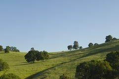 California del Nord Rolling Hills verde Fotografia Stock