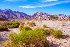 California Desert Lands Royalty Free Stock Photo