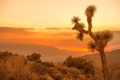 California Desert Scenery Stock Images