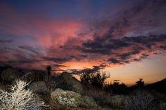 California desert sunset landscape with colorful sky. Desert sunset landscape in Yucca valley California with Joshua tree and colorful sky royalty free stock image