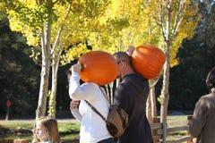california EE.UU. Octubre de 2012 Una familia joven con las calabazas en sus hombros va a celebrar Halloween fotografía de archivo libre de regalías