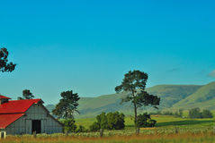 California Farm. And green hills in valley in Spring Royalty Free Stock Images