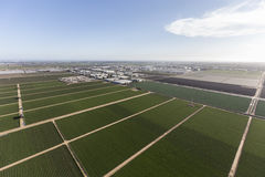 California Farm Land Aerial View Stock Image