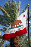 California Flag. The flag of the state of California vector illustration
