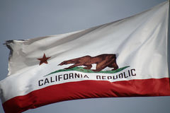 California flag. The great bear on the California flag stock photography