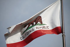 California flag. The great bear on the California flag royalty free stock photography