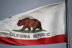California flag. The great bear on the California flag stock image