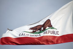 California flag. The great bear on the California flag royalty free stock images