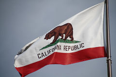 California flag. The great bear on the California flag royalty free stock image