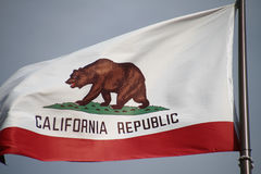 California flag. The great bear on the California flag royalty free stock photos