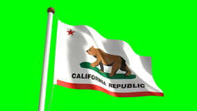 California flag stock video