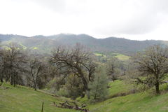 California foothills near Glennville. The foothills of the Sierra Nevada mountains in Kern County California, in April 2017. A fire burned through the area in Royalty Free Stock Photos