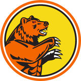 California Grizzly Bear Side Circle Retro Royalty Free Stock Photography