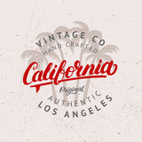 California hand written lettering with palms background. Stock Image