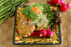 California Health Food - Bean Cakes and Sprouts. Colorful vegitarian food made popular by the whole food movement popularized on the west coast Stock Images