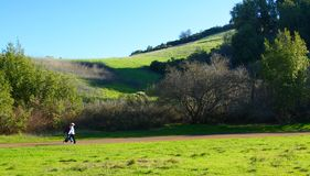 California hiking trail. With two hikers, this is the end of the day, trees cast long shadows stock photo