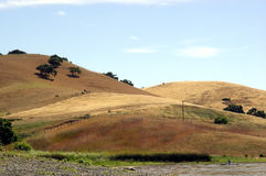 California hills (1). View from the lake royalty free stock photo