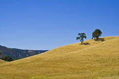 California hillside Stock Photo