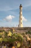 California Lighthouse, Aruba. Sunrise illuminates the California Lighthouse located on the northern tip of Aruba Royalty Free Stock Photography