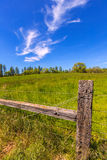 California meadow ranch in a blue sky spring day. USA stock image