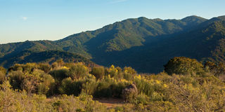 California Mountain Sunset. Panorama of a typical Central California sunset over wildflowers and the Santa Cruz Mountains.  Taken at Almaden Quicksilver Park Stock Image
