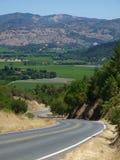 california napa dolina Zdjęcia Stock