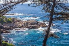 california niewygładzony brzegowy Fotografia Royalty Free