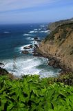 California North Coast Stock Photos