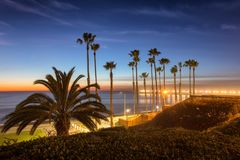 California Oceanside pier with palm trees view. California Oceanside pier over the ocean with palm trees and beach, travel destination Stock Photo