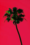 Abstract palm tree. Abstract vibrant tropical palm tree with red background Stock Photo