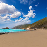 California Pfeiffer Beach in Big Sur State Park Royalty Free Stock Image