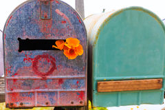 California poppy grunge mailboxes along Pacific Highway Route 1 Royalty Free Stock Photo
